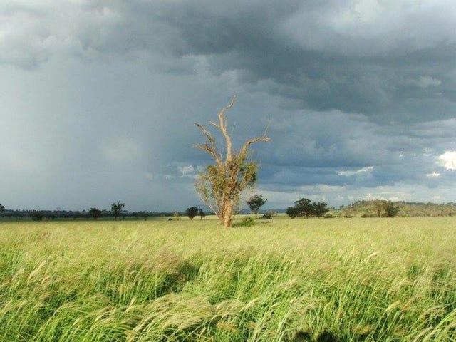 - Ridds Lane, Tamworth, NSW 2340