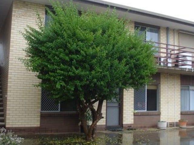 6/10 Collingrove Avenue, Broadview, SA 5083