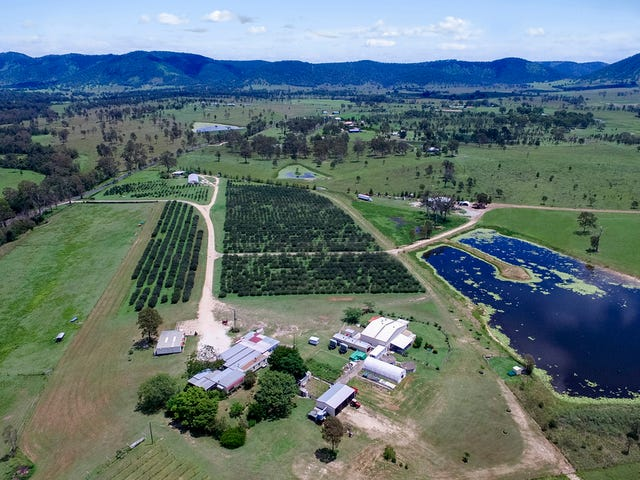 243 Harvey Road, Lower Wonga, Qld 4570