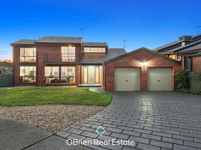8 Monica Close, Endeavour Hills, Vic 3802