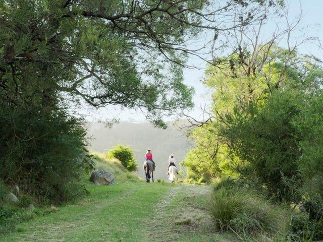 380 Cedar Hills Road, Little Forest, NSW 2538