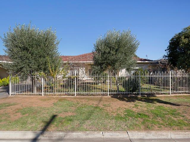 8 Amanda Street, Hectorville, SA 5073