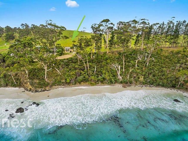 101 Big Roaring Beach Road, Surveyors Bay, Tas 7116