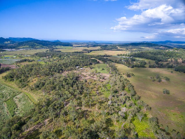 1747 Yakapari Seaforth Road, Mount Jukes, Qld 4740