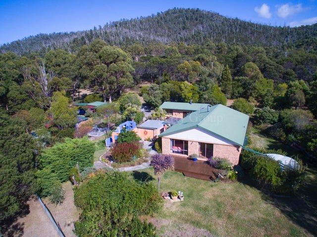 21384 Tasman Highway, Four Mile Creek, Tas 7215