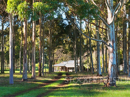 264 Redgate Road, Witchcliffe, Margaret River, WA 6285