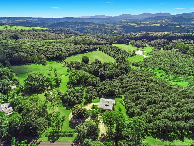 1675 Dunoon Road, Dunoon, NSW 2480