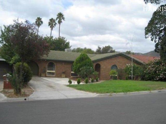 7 Tabaitha Drive, Athelstone, SA 5076