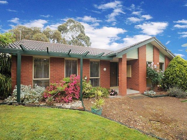 51 Eileen Grove, Woori Yallock, Vic 3139