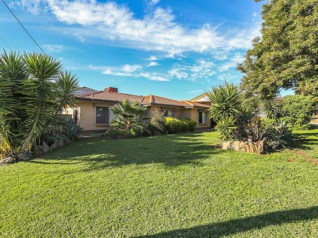 5 Brian Grove, Paradise, SA 5075