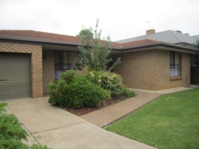 57 Victoria Street, Forestville, SA 5035