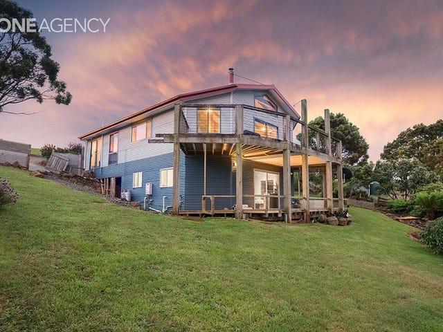 453 Preolenna Road, Flowerdale, Tas 7325