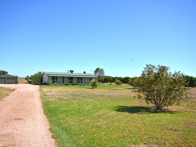 191 Stringer Road, Leeton, NSW 2705