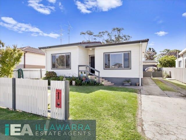 24 Hopetoun Street, Oak Flats, NSW 2529