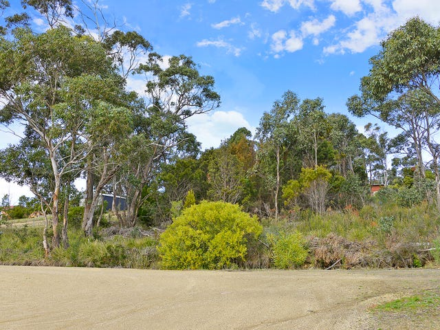 486 White Beach Road, White Beach, Tas 7184
