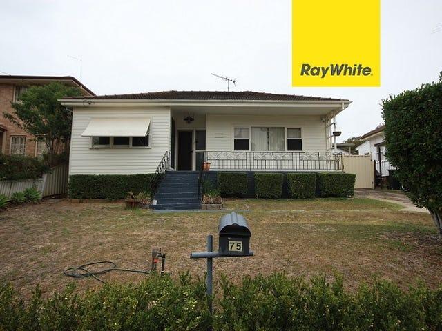 75 Bradbury Avenue, Campbelltown, NSW 2560