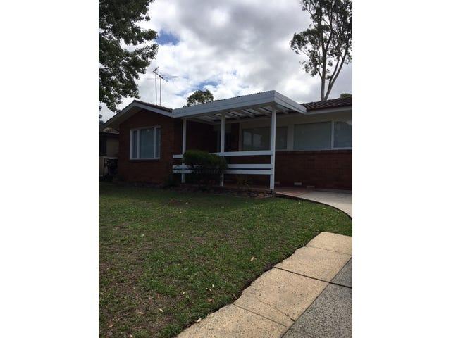 39 Greenoaks Crescent, Bradbury, NSW 2560