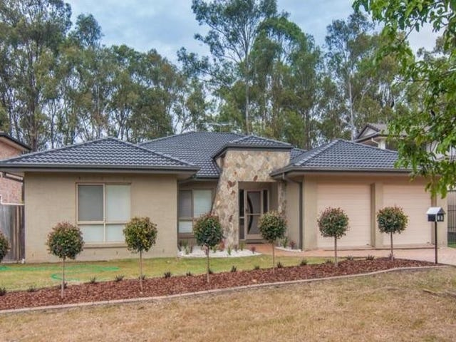 15 Boxwood Place, Carseldine, Qld 4034