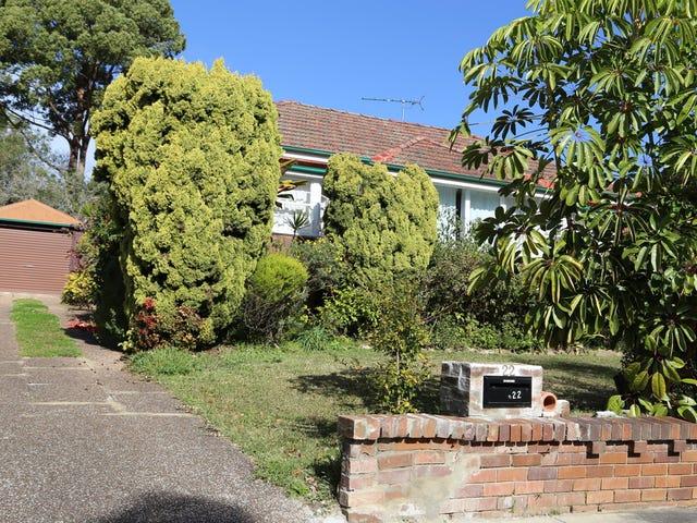 22 Dunlop Street, Epping, NSW 2121