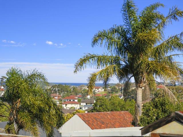 41 Lake Heights Road, Lake Heights, NSW 2502