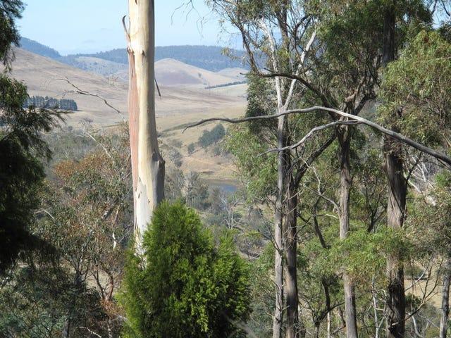 . Link Road, Colebrook, Tas 7027