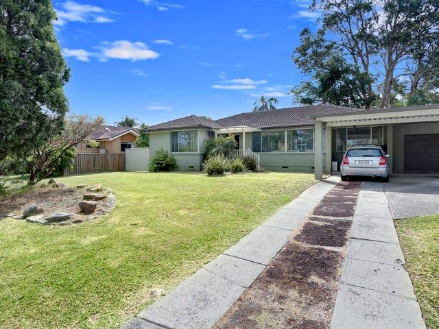 8 Yindela Street, Davidson, NSW 2085