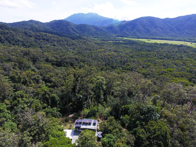 63 Old Forest Creek Road, Daintree, Qld 4873