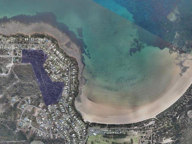 Lot 1 Top Road, Greens Beach, Tas 7270