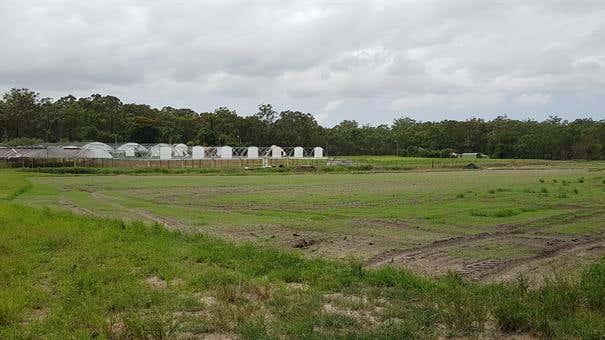 50 Mawsons Road Beerwah QLD 4519 - Image 1