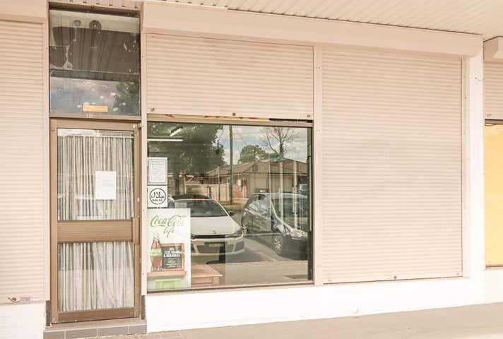 172 Townview Road Mount Pritchard NSW 2170 - Image 1