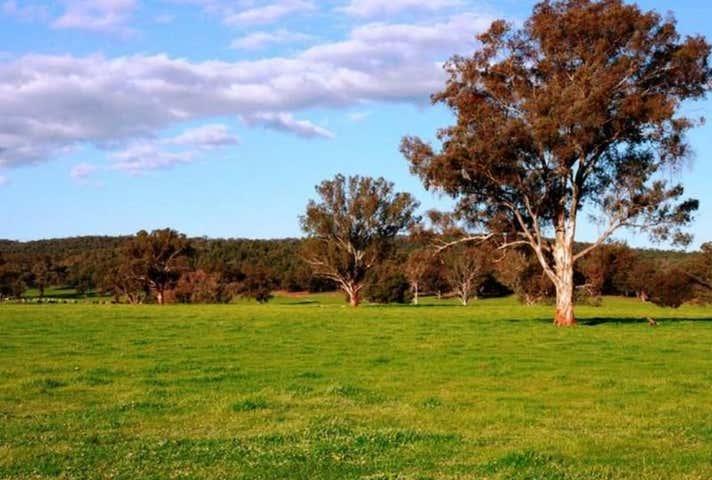 2242 Nangar Road Canowindra NSW 2804 - Image 1