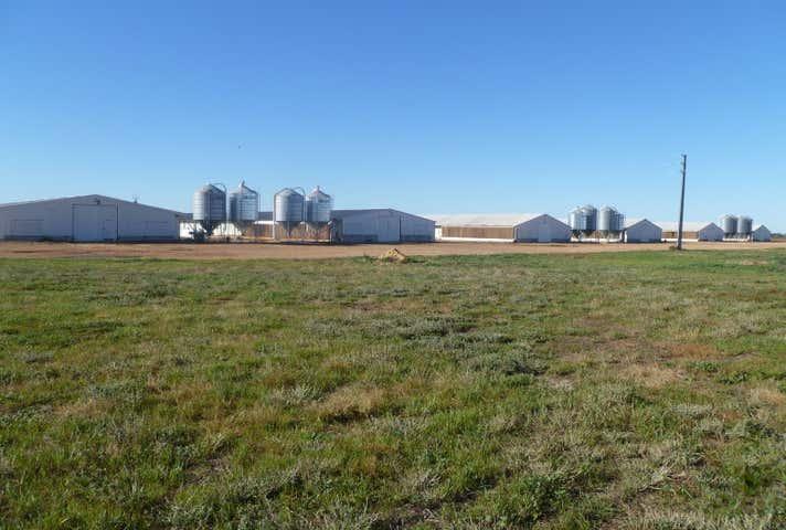 Cawrse Road Mallala SA 5502 - Image 1