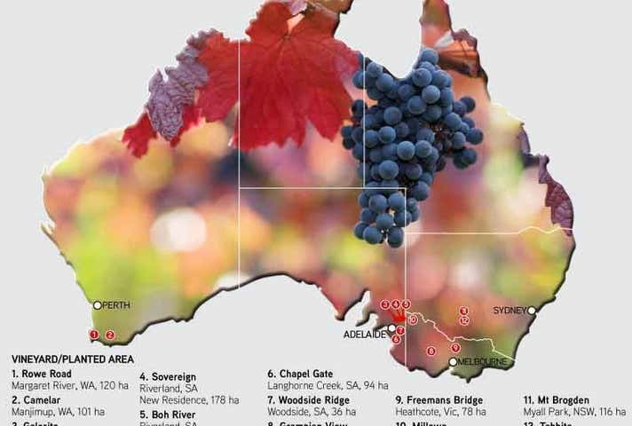 Great Southern Vineyard Holdings, Victoria, South Australia, New South Wales & Western Australia Adelaide SA 5000 - Image 1