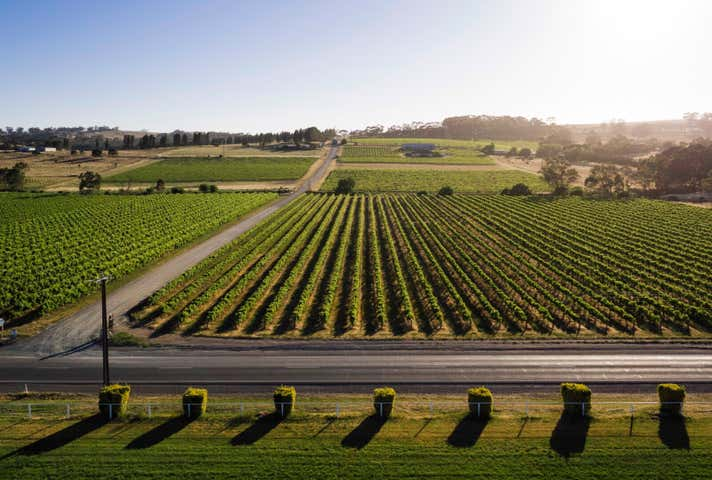 Flatview and White Hut Vineyards , Byrne Horrocks Highway Stanley Flat SA 5453 - Image 1