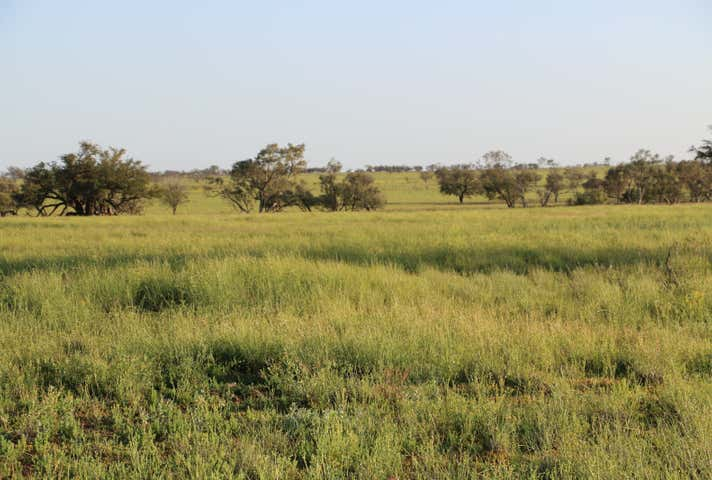 Listowel Downs Adavale Road Blackall QLD 4472 - Image 1