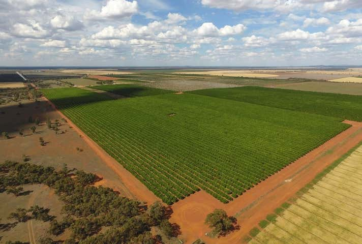 Hillston NSW 2675 - Image 1