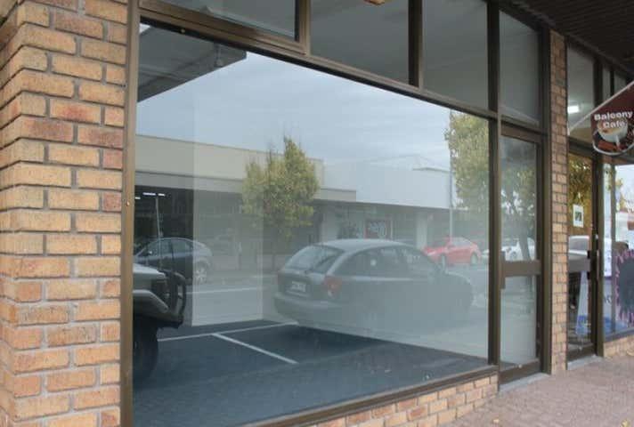 25 George Street Millicent SA 5280 - Image 1