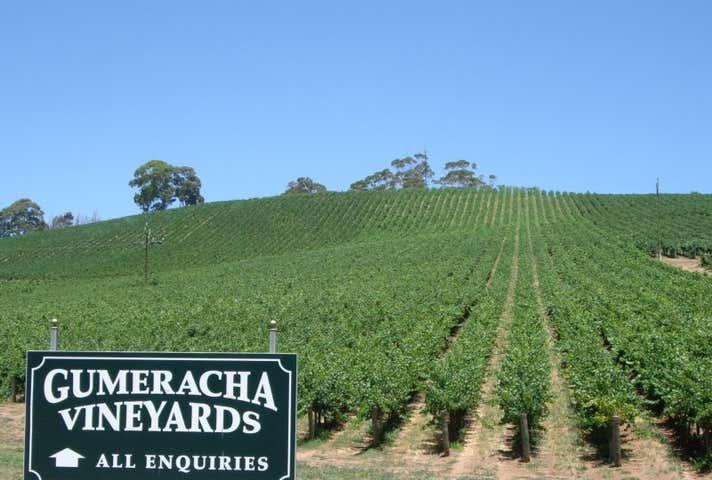 Gumeracha Vineyards, Adelaide to Mannum Road Gumeracha SA 5233 - Image 1