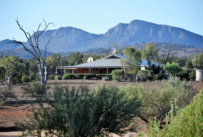 52 Flinders Ranges Way, Wilpena Pound Hawker SA 5434 - Image 1