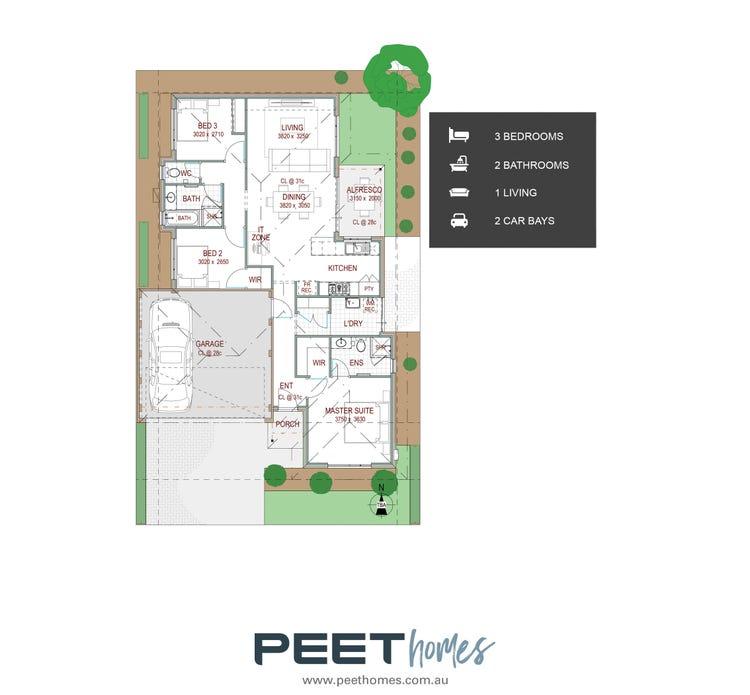 Sassafras   12.5 X 20m Floor Plan