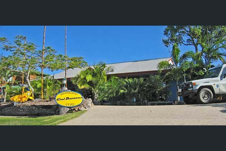 Cool Bananas , 2 Springs Road Agnes Water QLD 4677 - Image 3