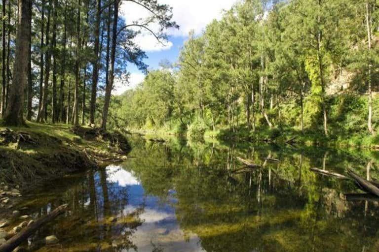 635 Gordonville Road Bellingen NSW 2454 - Image 3