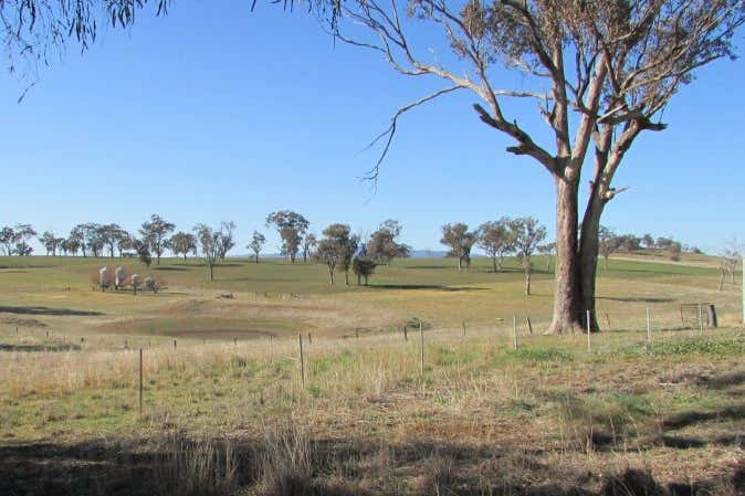 Rothesay, 606 Peabody Road Molong NSW 2866 - Image 3
