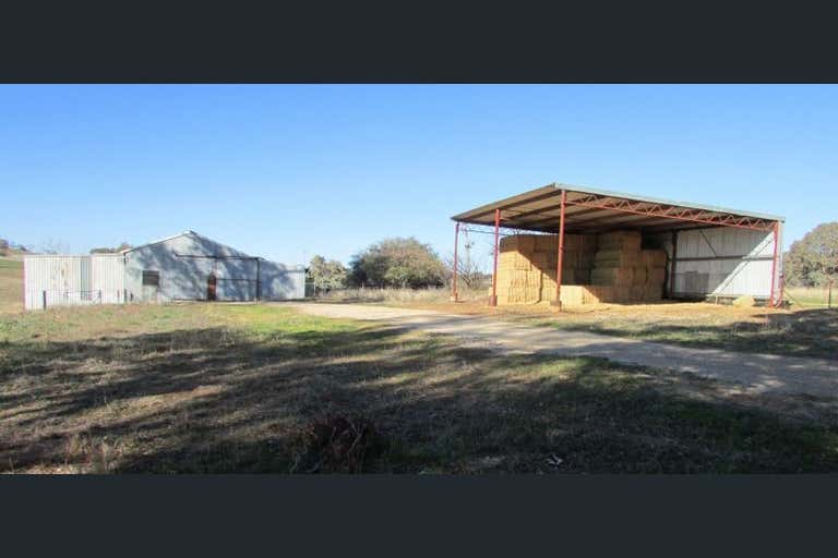 Rothesay, 606 Peabody Road Molong NSW 2866 - Image 2