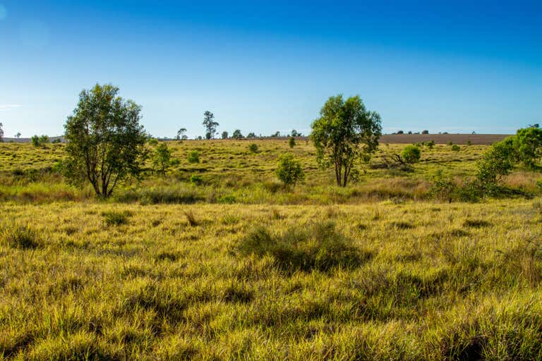 Nardu Glen Arden Road Roma QLD 4455 - Image 2