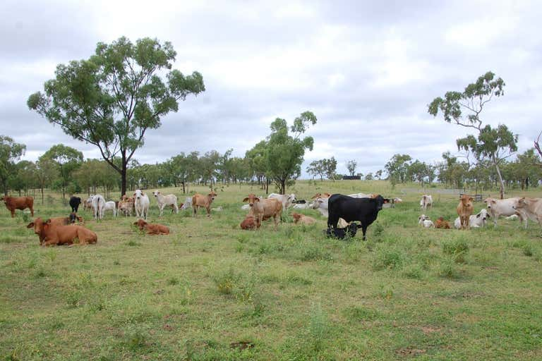 Charters Towers City QLD 4820 - Image 1