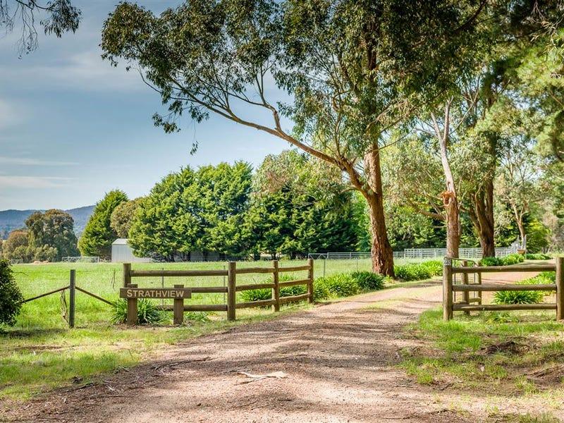 440 Boundary Hill Road, Boho South, Vic 3669