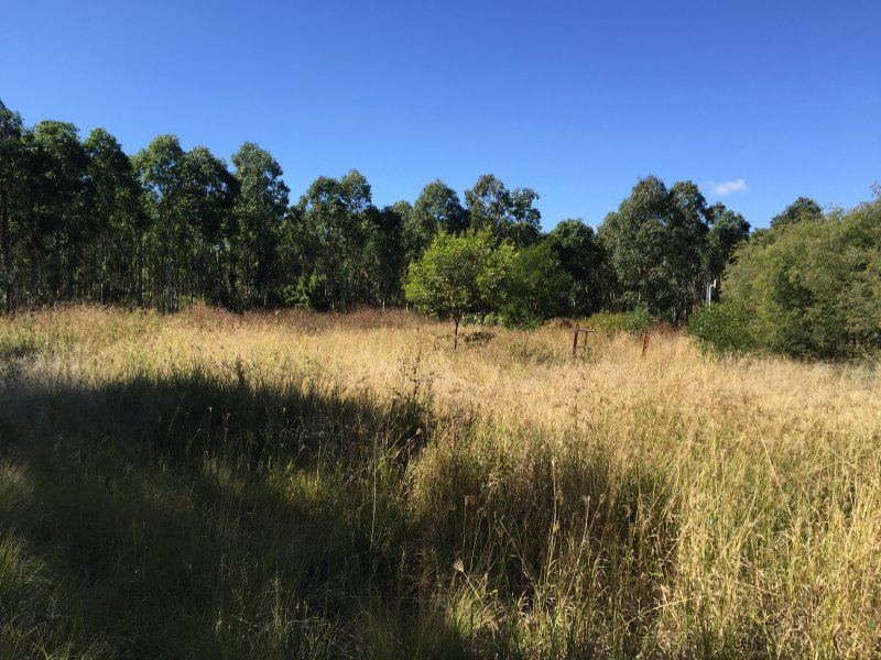Johnstons Road, Mannuem, Qld 4610