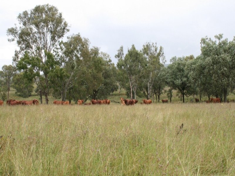 Lot 107 Mount Stanley Road, Avoca Vale, Qld 4314