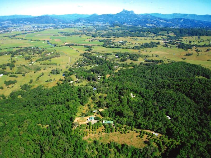 1151 Urliup Road, Urliup, NSW 2484